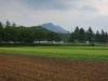 2014年そば畑畝づくり、種まき